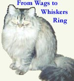 From Wags to Whiskers Ring